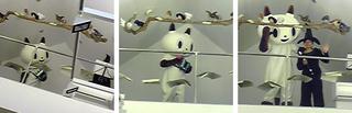 200810-21-12-f0183412_27529.jpg.jpg